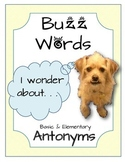 BuzzWords: Antonyms