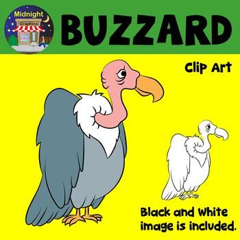 Buzzard Zoo Animals Clip Art