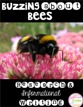 Bees Informational Writing and Research