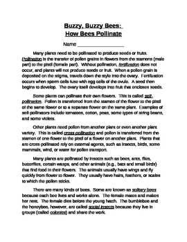 Buzzy Bees Pollination Article with Multiple Choice Questions
