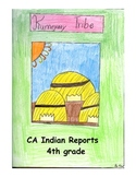 CA Indian Reports