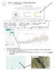 CA Pika - Indicator Species of Climate Change - Activity + Webquest [HS-LS4-5]