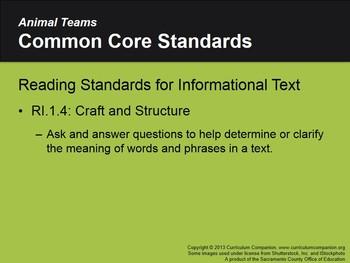 CA Treasures Animal Teams Grade 1 Unit 4 (Common Core Standards)