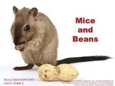 CA Treasures Mice and Beans Grade 2 Unit 4 (Common Core Standards)