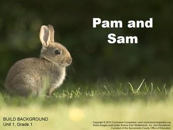 CA Treasures Pam and Sam Grade 1 Unit 1 (Common Core Standards)