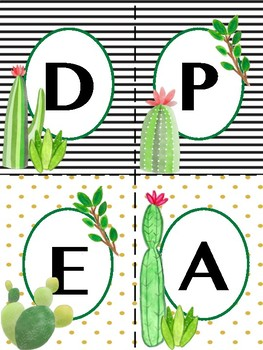 CACTUS SPANISH WORD WALL: HIGH FREQUENCY WORDS -W/O TRANSLATIONS