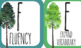 CAFE Board Forest Theme with Common Core Alignment Bundle