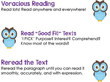 CAFE/Daily 5 Owl Theme, Reading Strategies