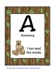 CAFE Posters-Camping, Animals, Nature, Forest
