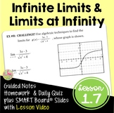 Calculus: Infinite Limits and Limits at Infinity