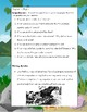 CALL IT COURAGE by Armstrong Sperry Novel Reading Study Guide/Teaching Unit