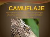 CAMOUFLAGE - CAMUFLAJE: How Do I Hide myself?