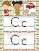 CAMPING - Alphabet Cards, Handwriting, ABC Flash Cards, ABC print with pictures