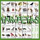 #5 CARTELES y TARJETAS Hábitats de Animales EL BOSQUE en ESPAÑOL Gr. 1-3