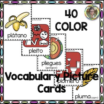 CARTELES y TARJETAS de sílabas trabadas CONSONANT BLENDS en palabras con PL