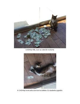 CASHnip Kitty- Intermediate, Script, Structures, PQA, Reading comprehension