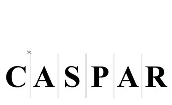 CASPAR/CASPER Reading Strategy Interactive Notebook Foldables