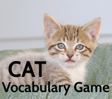 CAT Vocabulary game/activity