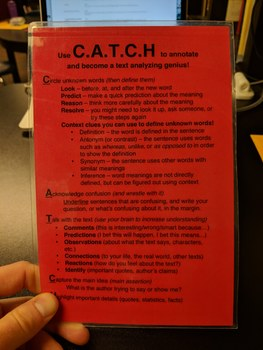 CATCH Annotation and Writing Strategy Cards