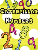 CATERPILLAR NUMBER AND NUMBER WORDS 1-20 COLORED
