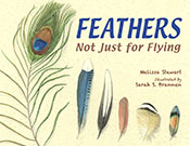 Feathers  (eBook)