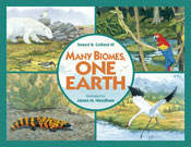 Many Biomes, One Earth