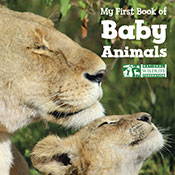 My First Book of Baby Animals (eBook)