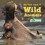My First Book of Wild Animals (eBook)