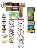 CC Cycle 1 WK 2 Visual Cues