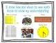 CCSS 8 Habits of Mind Classroom Posters