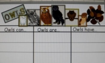 CCSS Aligned Informational Text Comprehension with Owls by Gail Gibbons