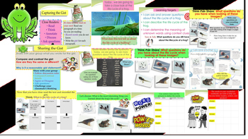 Engage NY Expeditionary Learning 3rd grade Module 2A Unit 2 Lesson 3 PowerPoint