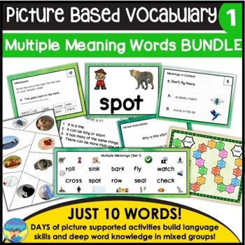 Homonyms: Multiple Meaning Picture Vocabulary Bundle A