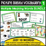 Homonyms: Differentiated Instruction Bundle for Multiple Meanings A