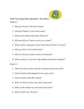 """CCSS Text Based Novel Questions """"Pinballs"""""""