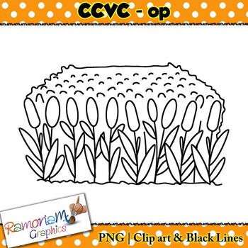 CCVC short vowel op clip art