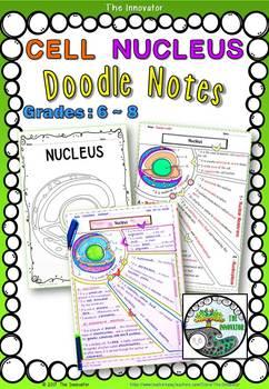 "CELL NUCLEUS- ""Doodle Notes"""