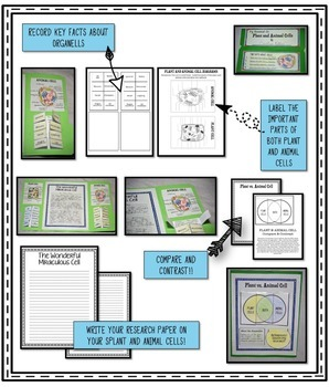 CELLS Research Report Lapbook