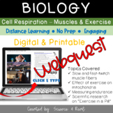 CELLULAR RESPIRATION - Exercise and Muscles - Webquest (Digital/Printable)