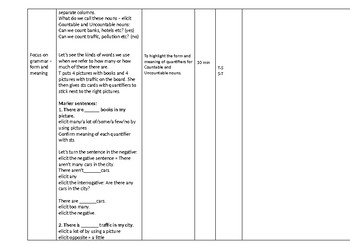 CELTA Lesson Plan quantifiers pre-interm by Adela Simoiu   TpT