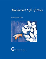 The Secret Life of Bees Lesson Plans
