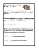 CGI Fraction Problem Solving- Birdseed Scoops