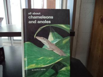 CHAMELEONS AND ANOLES     ISBN 0-86622-795-4