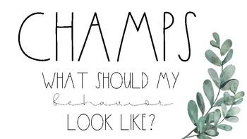 CHAMPS Behavior Management Posters #3