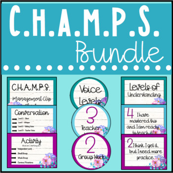 CHAMPS Posters, Levels of Understanding, Voice Levels Posters
