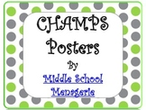 CHAMPS posters - Lime and Grey Polka Dots