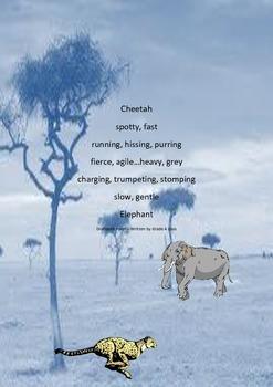 CHEETAH ELEPHANT DIAMANTE POEM - ORIGINAL