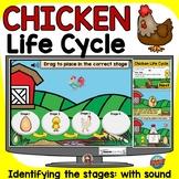 CHICKEN FARM ANIMAL LIFE CYCLE BOOM DIGITAL: GOOGLE CLASSR
