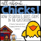 CHICKS {Hatching and Raising Chicks in the Classroom}