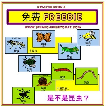 CHINESE WEEKLY FREEBIE #68: 昆虫 Insect Flip Books